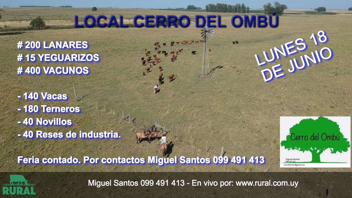 Afiche 18 de Junio - Local Cerro del Ombú