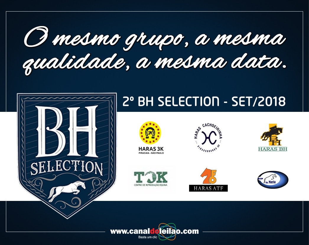 Afiche BH Selection