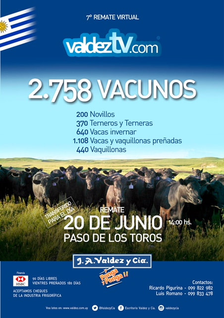 Afiche 7º Remate Virtual